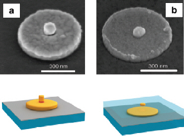 The composite nanostructures