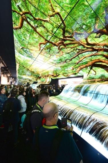 LG's 'OLED Falls' display in Las Vegas