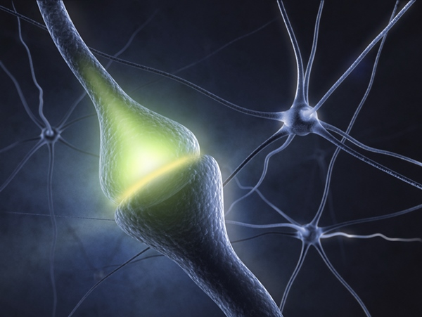 Light controls neurons