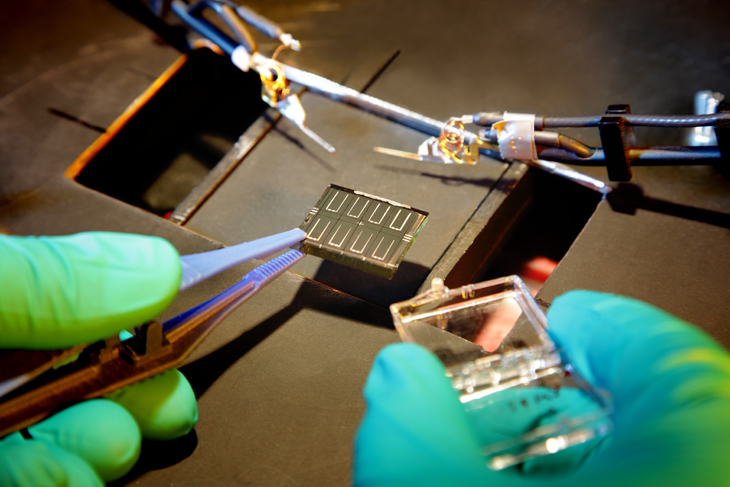 In the photovoltaics industry, solar cells are processed as fast as possible.