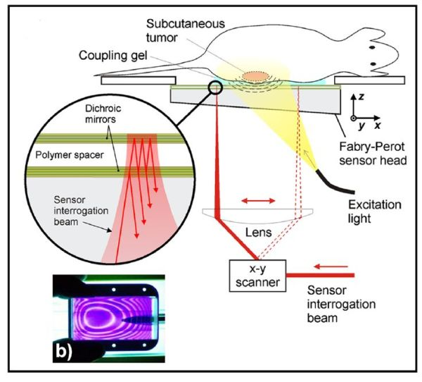 An all-optical photoacoustic platform