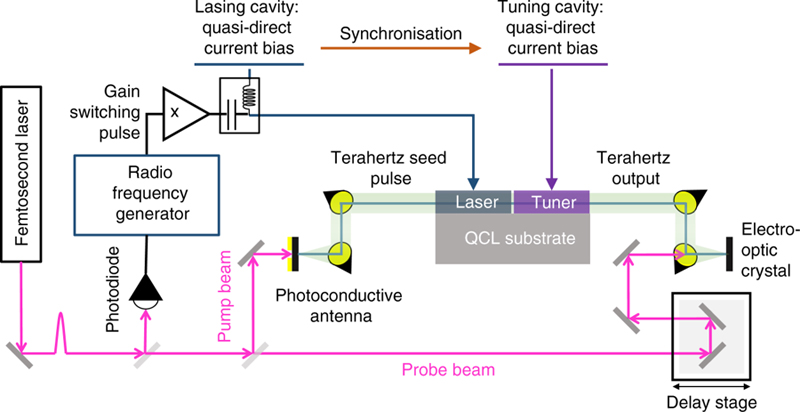 Experimental arrangement used for injection seeding of the coupled-cavity laser.