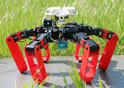 AntBot walks about and returns home using polarized light as a guide.