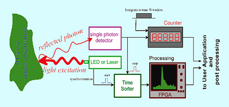 Light sensitive: Single photon detection measurements now possible.
