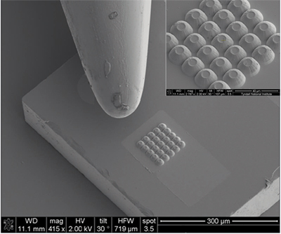 Small but powerful: A cluster of 25 MicroLEDs beside the tip of a needle.