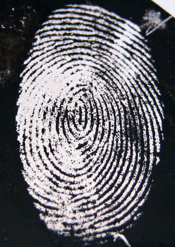 Whodunnit? Enhanced image of fingermark on stainless steel.