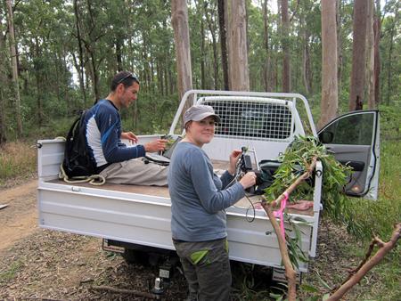 Wood news: Rachel and Mat Disney of UCL use an ASD Fieldspec.