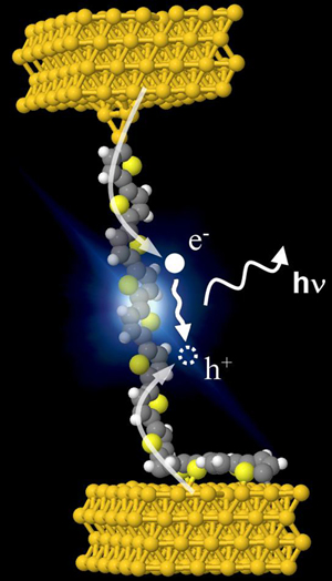 Electroluminescence in a single polythiophene molecular.