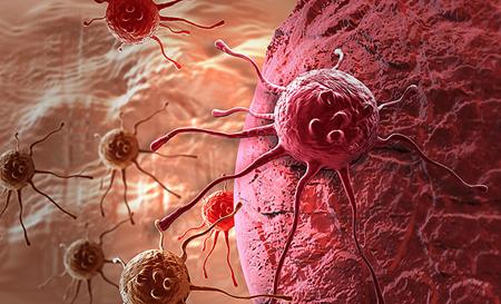 Measurement of heterogeneity of different tumor cells.