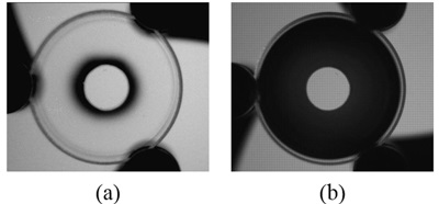 Dual-mode aperture filter