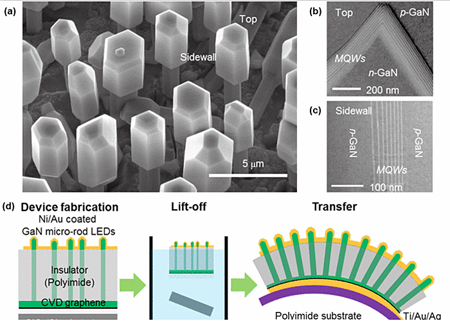 GaN micro-rod LEDs fabricated on graphene films.