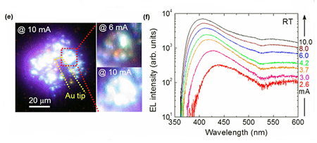 (e) Light emission from the micro-rod LED; (f) EL spectra at room temperature.