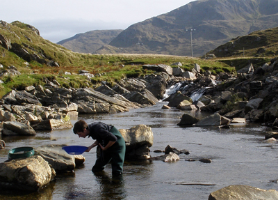Panning for gold in Ireland.