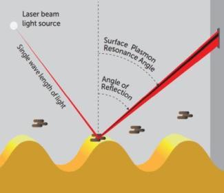 Spotting Legionella via surface plasmon resonance