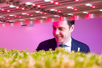 Growing in value: LEDs for horticulure