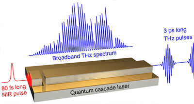 Broadband terahertz amplifier based on a quantum cascade laser.
