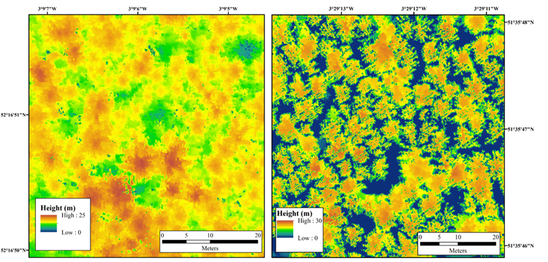 Lidar-scanned larches: not Infected (left); infected (right).