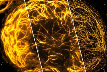 Super-resolution capability: a new photonic chip