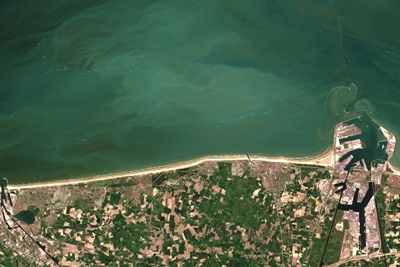 Algal bloom off the Belgian coast