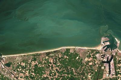 Algal bloom off the Belgian coast