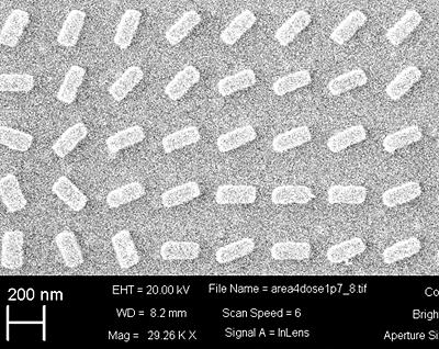 SEM image of the fabricated metasurface.