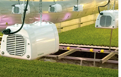 Heliospectra's LX60 reduces a user's carbon footprint while optimizing plant quality.