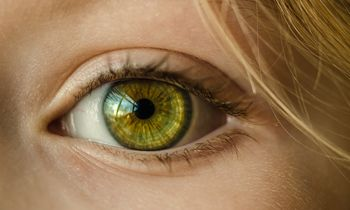 The human iris: a complex structure