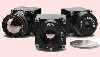 FLIR Systems: Thermal Vision's dutomotive development kit.