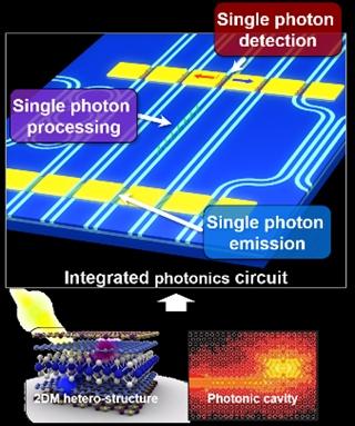 2D materials for quantum devices