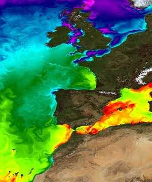 Sea surface temperatures via Copernicus